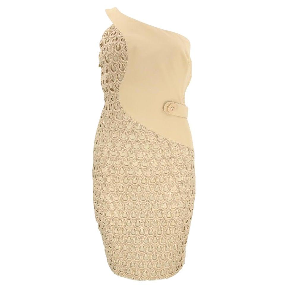 S/S 2011 Look # 36 Versace Crepe Nude Dress 40 - 4/6