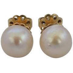 18kt Gold White Pearl Earrings