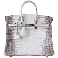 Hermes Birkin Bag 25 Blanc Himalaya Exquisite Jewel Palladium Hardware