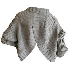 Issey Miyake Fan Pleated Gray Jacket