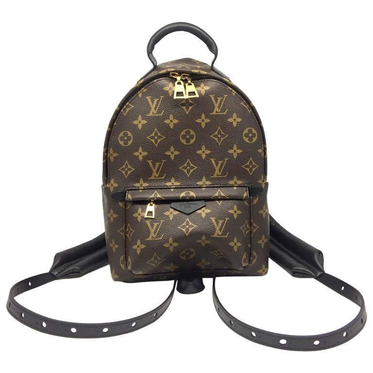 Louis Vuitton Palm Springs PM Monogram Backpack 1