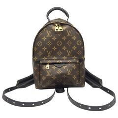Louis Vuitton Palm Springs PM Monogram Backpack