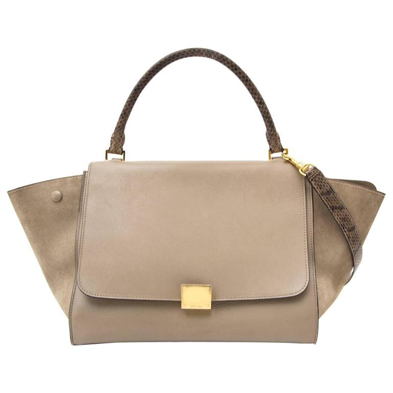 Céline Medium Calf Leather Suede Whipsnake Taupe Trapeze Shoulder Bag 1