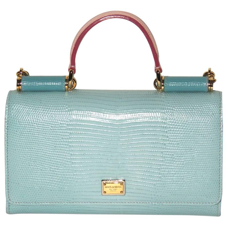 DOLCE & GABBANA Limited Edition Mini Wallet Bag