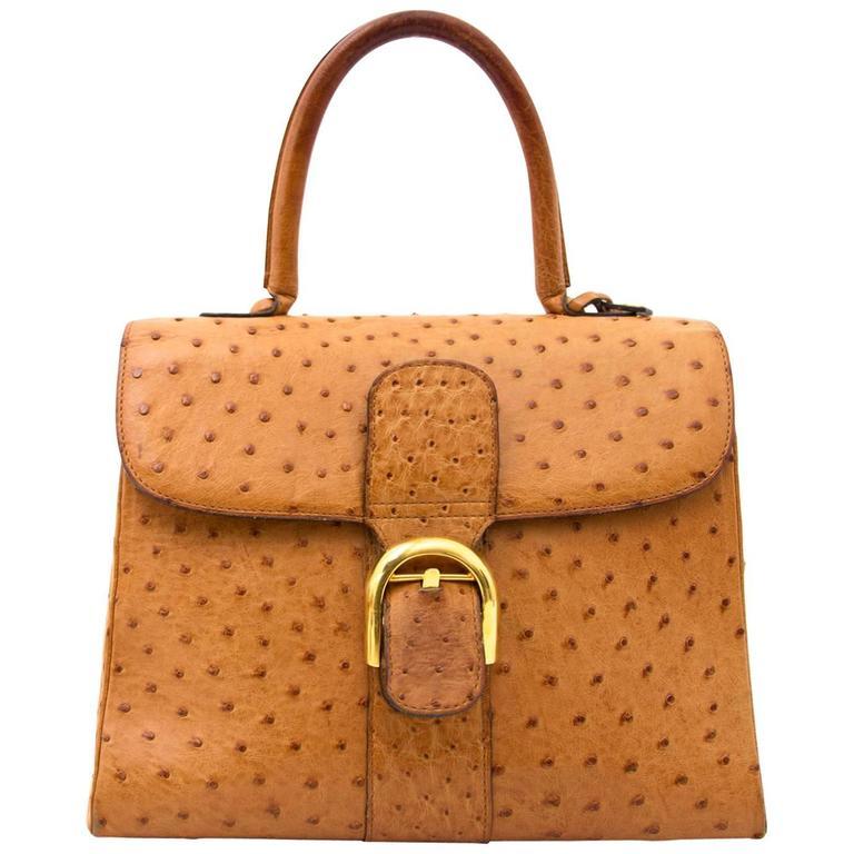 Delvaux Brillant Mm Ostrich Bag For