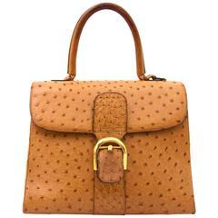Delvaux Brillant MM Ostrich Bag