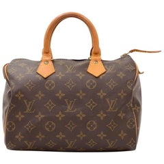 Vintage Louis Vuitton Speedy 25 Monogram Canvas City Hand Bag