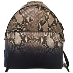 Fendi Selleria Python Backpack (Gray/White, Size - OS)