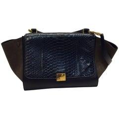 Celine Tricolor Trapeze Python Handbag
