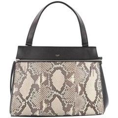 Celine Edge Bag Python and Leather Medium