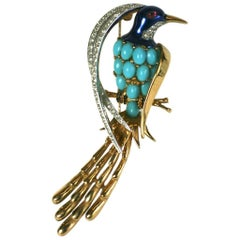 Marcel Boucher Bird of Paradise