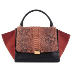 Celine Tricolor Trapeze Handbag Python and Leather Medium