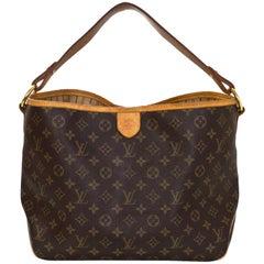 Louis Vuitton Monogram Delightful PM Hobo Bag