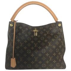 Louis Vuitton Monogram Gaia Hobo Bag