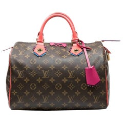 LOUIS VUITTON 'Speedy 30' Limited Edition Bag in Brown totem Monogram Canvas