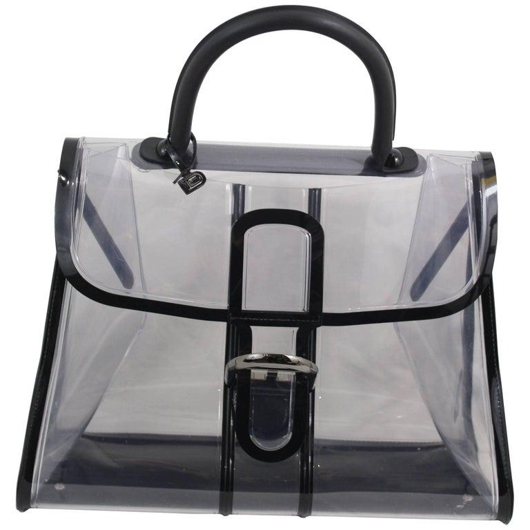 Delvaux Plexi Le brillant  Xray Bag For Sale
