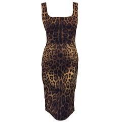 Daring Dolce & Gabbana Leopard Print Sheath Dress