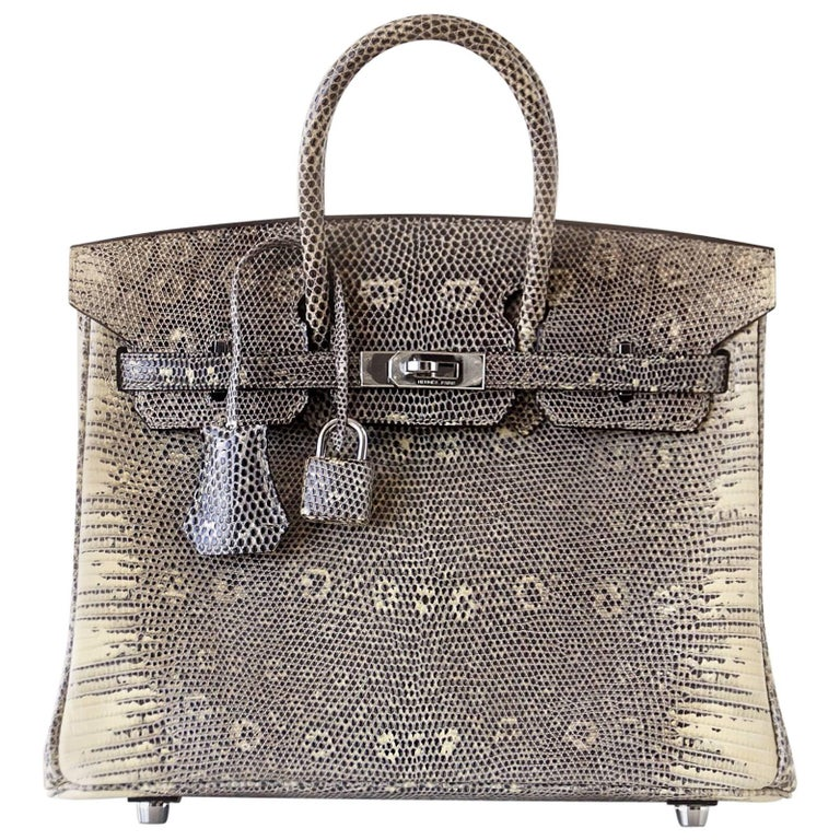 Hermes Ombre Lizard Palladium Hardware Birkin 25 Bag  For Sale