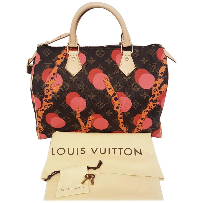 Louis Vuitton Speedy Ramages Bag Print 2015 Cruise Collection