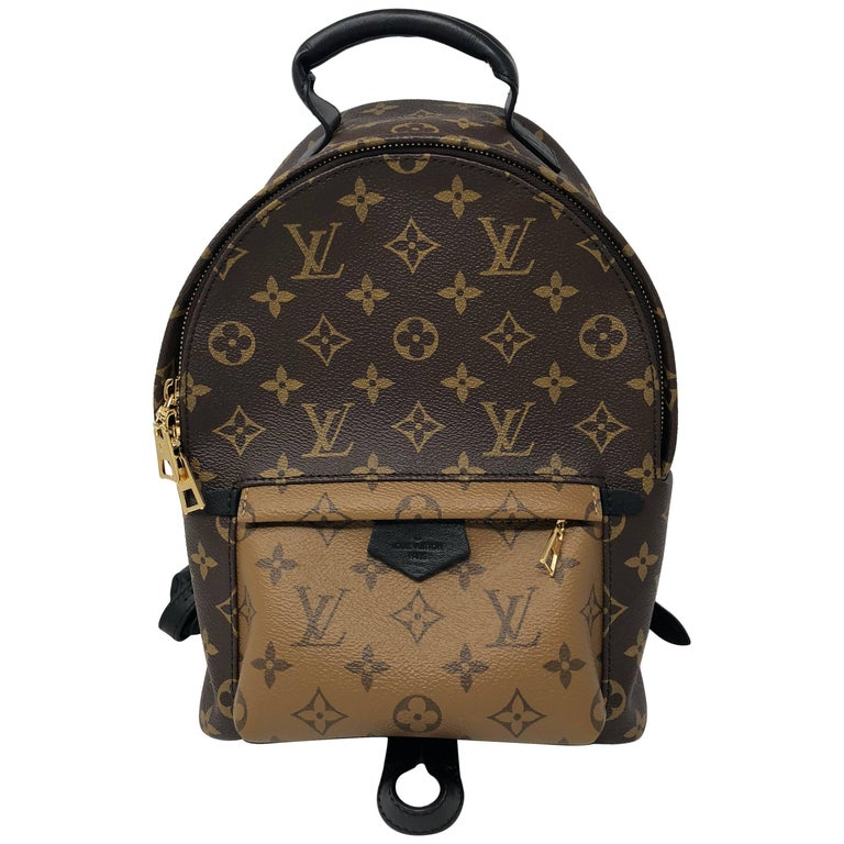 Louis Vuitton Reverse Palm Springs Backpack PM For Sale