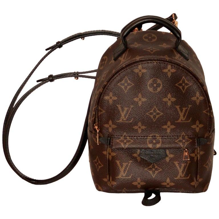 48b746db34fcf Louis Vuitton Palm Springs Backpack Mini at 1stdibs