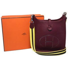 Hermes Mini Raisin Clemence Leather Evelyne Shoulder Bag