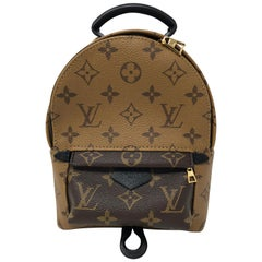 Louis Vuitton Reverse Palm Springs Mini Backpack