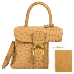 5dcee912e7 Very good preloved condition Delvaux Brillant Mini Ostrich Bag This gorgeous