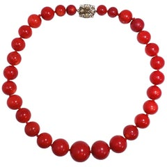 """Italian 22mm Graduated Genuine Oxblood Red Coral Bead 22"""" Necklace, circa 1930s"""
