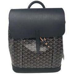 Goyard Alpin Backpack