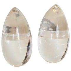 Patricia von Musulin Lucite Clip Earrings