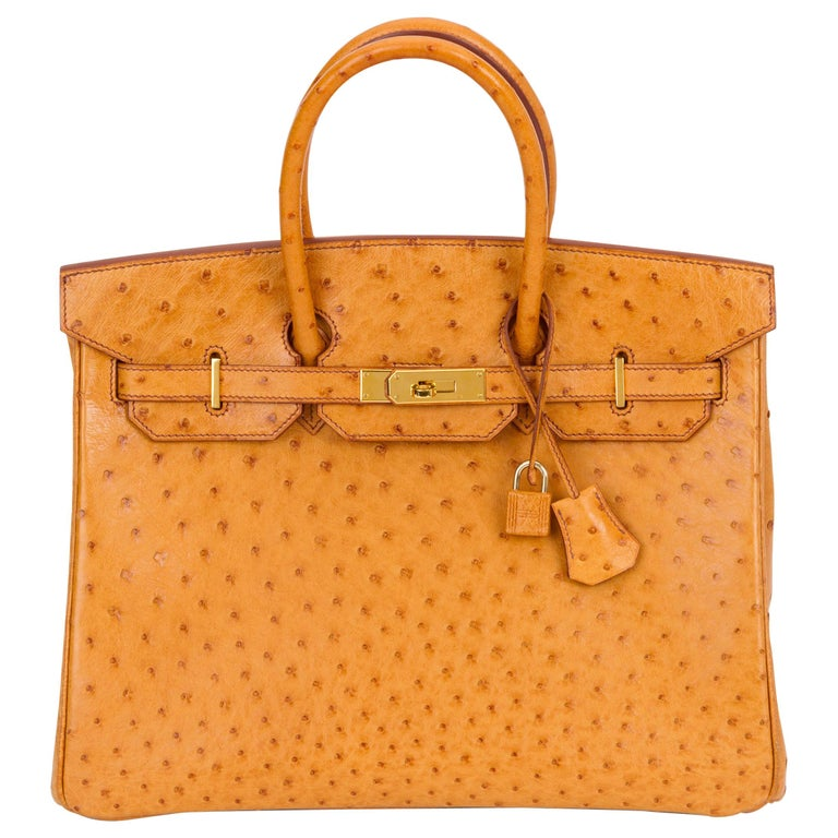 Rare Hermes Birkin 35 Ostrich Sable Gold Bag For Sale