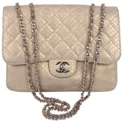 Chanel Accordeon Flap Bag Python Leather - greenish matte gold