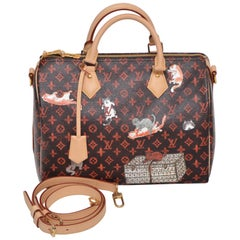 LOUIS VUITTON Catogram Bag Speedy 30 Grace Coddington  New