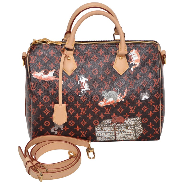 LOUIS VUITTON Catogram Bag Speedy 30 Grace Coddington  New 1