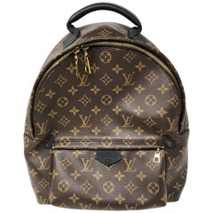 Louis Vuitton Palm Springs MM Backpack