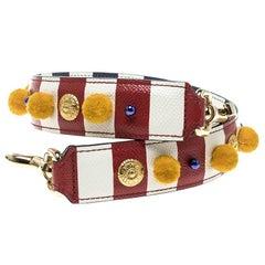 Dolce and Gabbana Multicolor Striped Leather Embellished Shoulder Strap