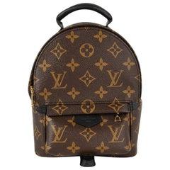 Louis Vuitton Palm Springs Backpack Mini Monogram