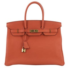 Hermes Birkin Handbag Terre Battue Togo with Gold Hardware 35