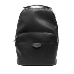 Louis Vuitton Anton Taiga Leather Backpack