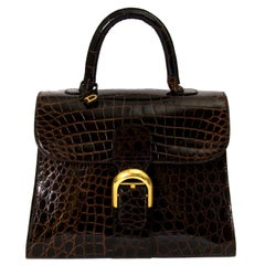 Delvaux Brown Croco Brillant MM