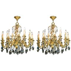 Pair of Large 20th Century Fifteen-Branch Gilt Brass Chandeliers