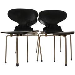 Set Of 6 Arne Jacobsen Walnut 3107 Chairs Nailed Metal