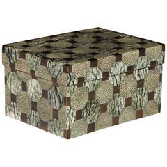 Exceptional Shagreen and Bronze Box with Geometric Design