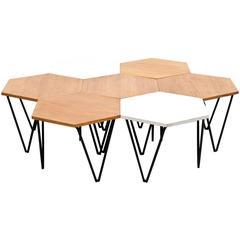 Gio Ponti Segmented Coffee Tables