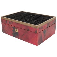 Exceptional Jewelry Box in Lacquered Pen Shell with Exotic Feather Accents