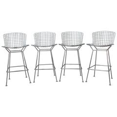 Set of Four Bertoia Bar Stools for Knoll