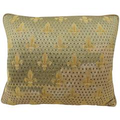 19th Century Fleur de Lis Embroidery Tapestry Decorative Pillow