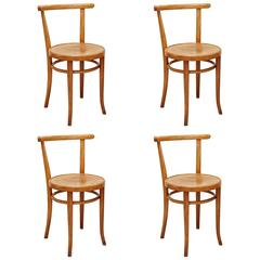 Set of Four Thonet 51 Chair by Auguste Thonet for Thonet