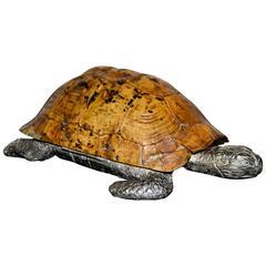 1970s Gabriella Crespi Turtle Box